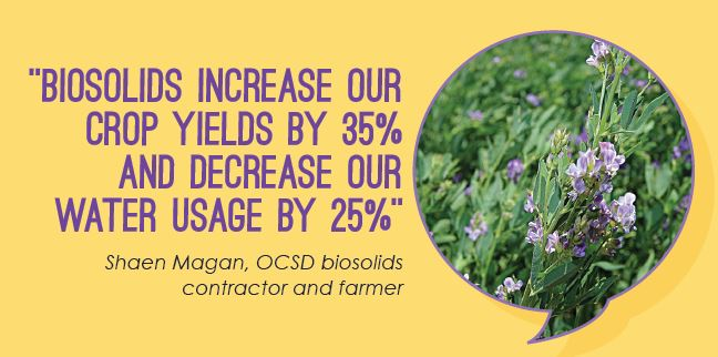 Crop-yields-increase