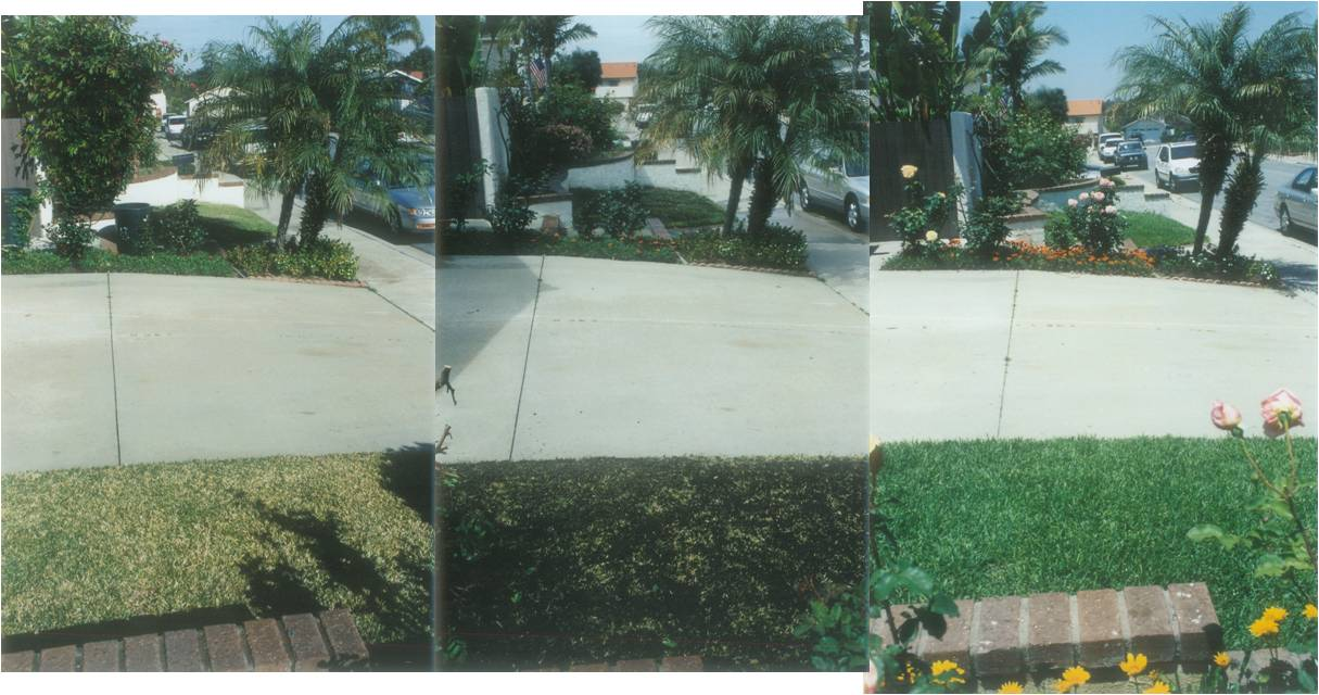 Ted_Turf-Reseed-before-during-after